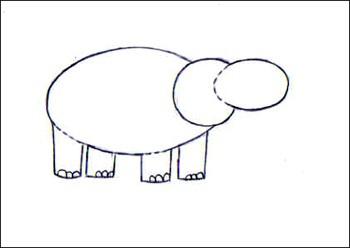 hippopotame3