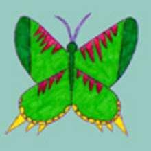 Dessiner un papillon - Dessin - Apprendre à dessiner - Dessiner des animaux