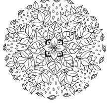 Coloriage des elfes des fleurs - Coloriage - Coloriage MANDALA - MANDALAS DES ELFES à colorier