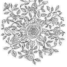 Coloriage du mandala des roses