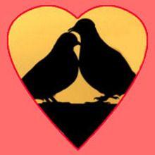 Les symboles de la Saint-Valentin - Lecture - REPORTAGES pour enfant - Divers