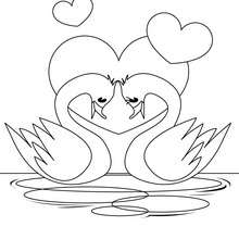 Coloriage d'un couple de cygnes - Coloriage - Coloriage FETES - Coloriage SAINT VALENTIN - Coloriage COUPLE DE LA SAINT VALENTIN