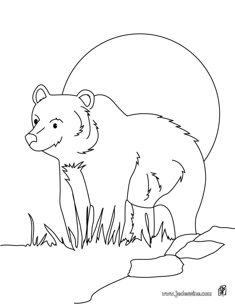 Coloriages coloriage d 39 un ours au cr puscule fr - Dessin d un ours ...
