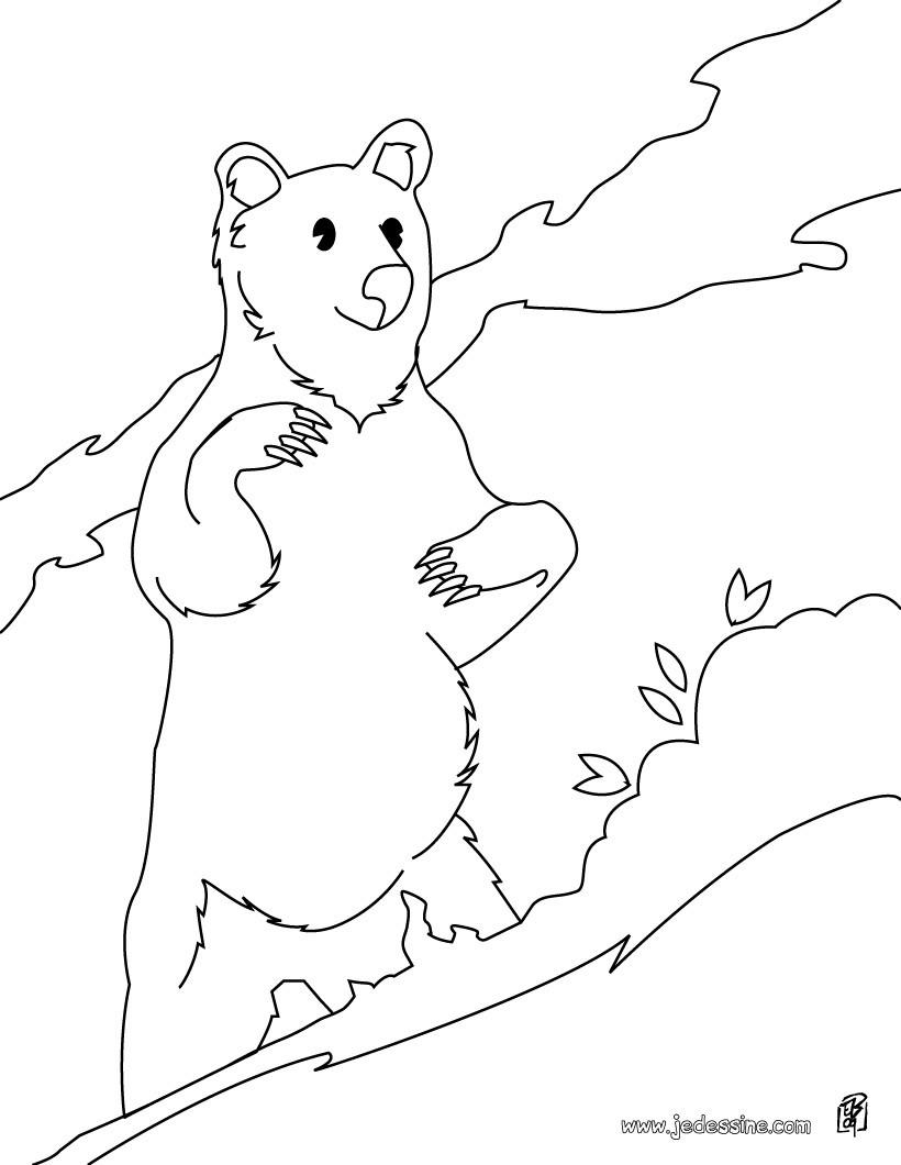 Coloriages coloriage d 39 un ours dress sur ses pattes - Dessin d un ours ...
