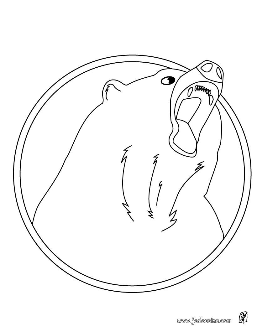 Coloriages coloriage d 39 un ours en col re - Dessin d un ours ...