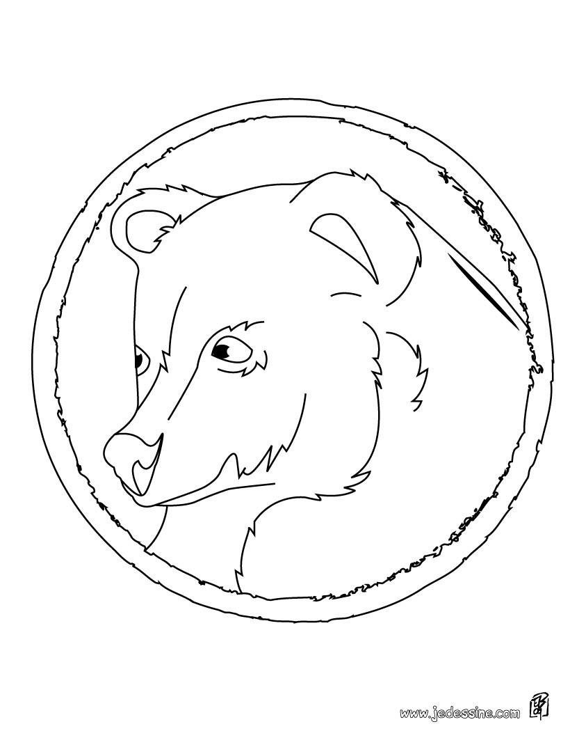 Coloriages coloriage du portrait d 39 un ours - Dessin d un ours ...