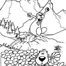 Les marmottes - Coloriage - Coloriage NATURE - Coloriage LES 4 SAISONS