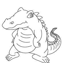 Coloriage d'un gros crocodile - Coloriage - Coloriage ANIMAUX - Coloriage ANIMAUX DE LA JUNGLE - Coloriage CROCODILE
