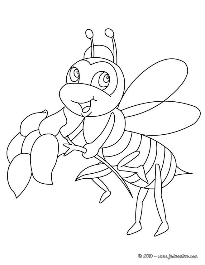 Coloriages coloriage d 39 une abeille - Coloriage d abeille ...