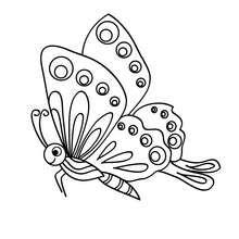 Coloriage : Joli petit papillon
