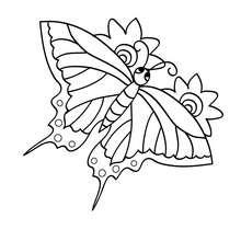 Coloriage : Papillon dans les airs