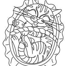 Coloriage : Chat dans un panier