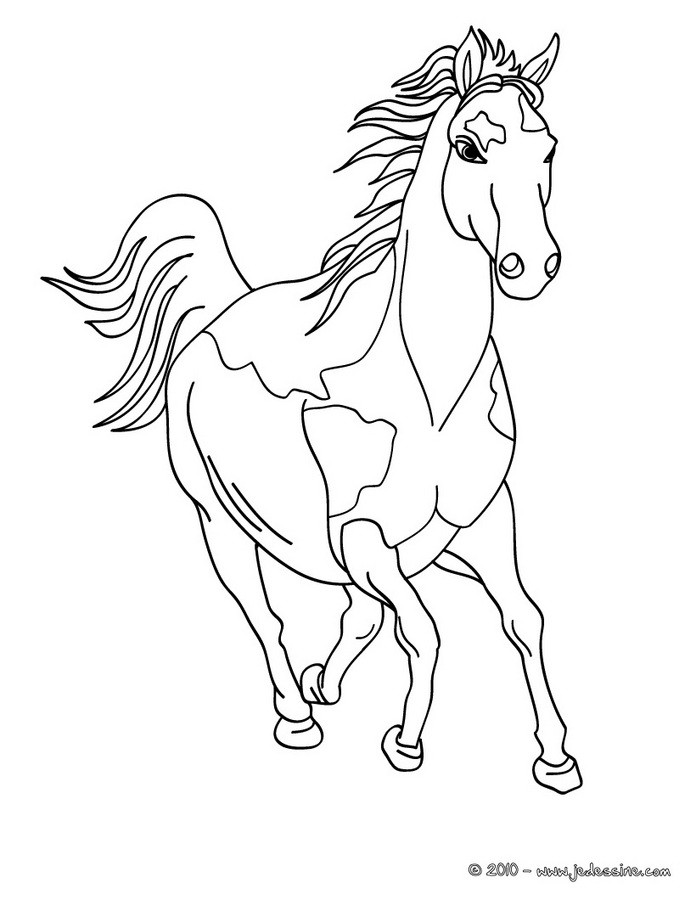 chevale coloring pages - photo#8