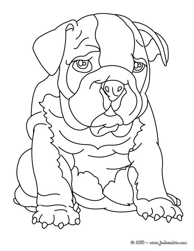 Coloriages bouledogue - Coloriage de chien ...
