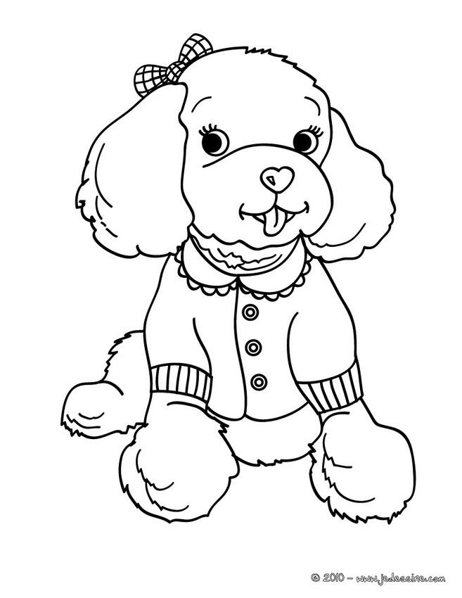 Coloriages caniche - Coloriage de chien ...