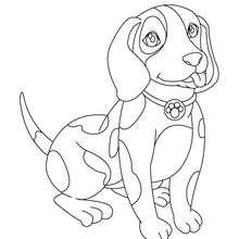 Coloriage de chien : Fidèle compagnon