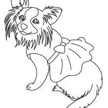 Coloriage de chien : Terrier