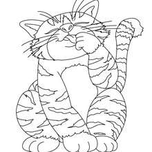 Coloriage : Gros chat