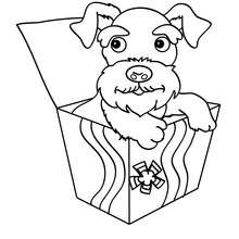 Coloriage de chien : Cadeau canin