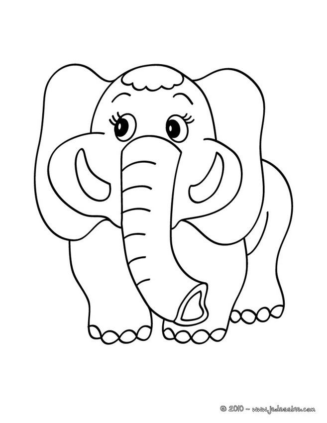 Coloriages coloriage d 39 un elephant colorier - Dessin d un elephant ...