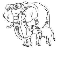 Coloriage d'une maman ELEPHANT - Coloriage - Coloriage ANIMAUX - Coloriage ANIMAUX AFRIQUE - Coloriage ELEPHANT