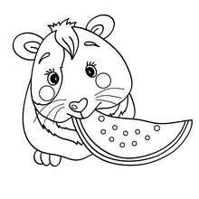 Coloriage De Cochon Gratuit.Coloriages Cochon D Inde Coloriages Coloriage A Imprimer