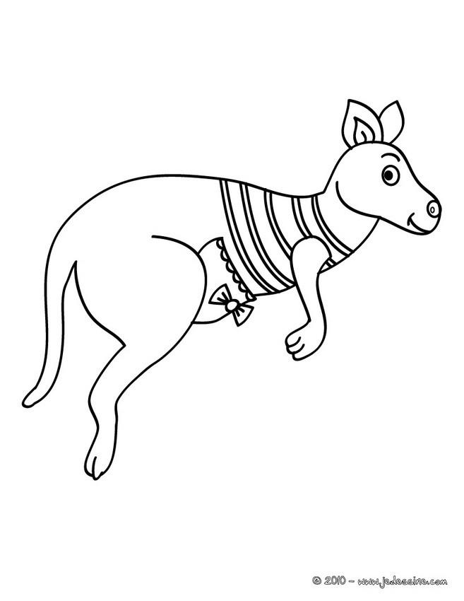 COloriage d'un bébé KANGOUROU