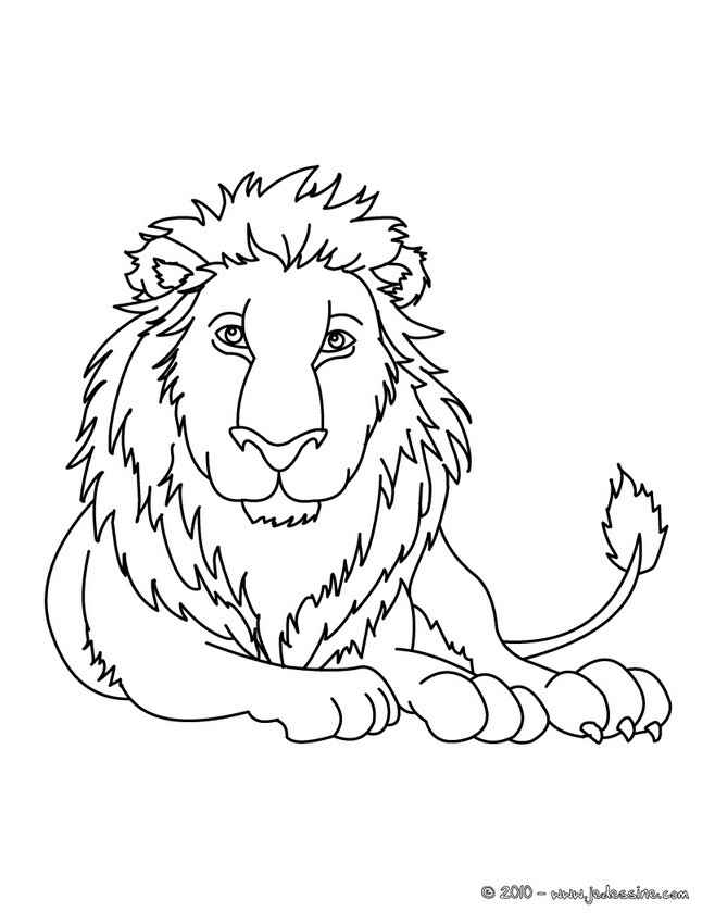 Coloriages lion colorier - Image de lion a imprimer ...