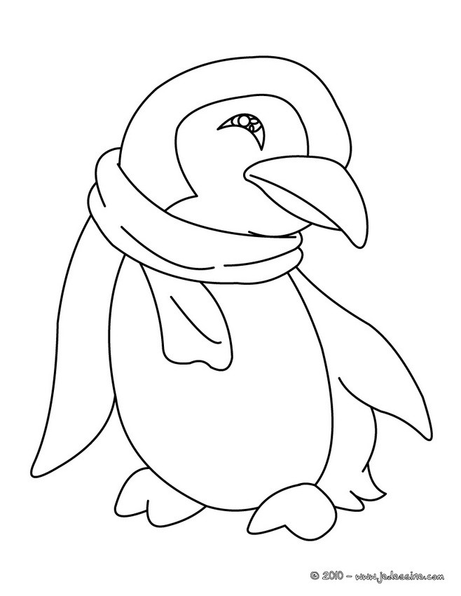 Coloriages coloriage d 39 un b b pingouin - Dessin pinguoin ...