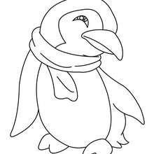 Coloriage d'un bébé PINGOUIN