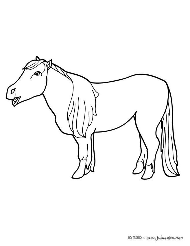 Coloriages coloriage d 39 une ponette - Coloriage poney en ligne ...