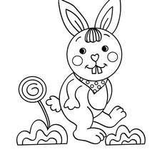 Bébé LAPIN à colorier - Coloriage - Coloriage ANIMAUX - Coloriage ANIMAUX DOMESTIQUES - Coloriage LAPIN
