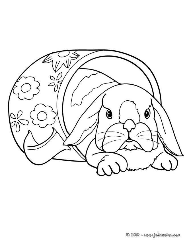 Coloriages coloriage d 39 un lapin nain - Un lapin dessin ...