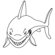 Coloriage d'un requin affamé - Coloriage - Coloriage ANIMAUX - Coloriage ANIMAUX MARINS - Coloriage REQUIN