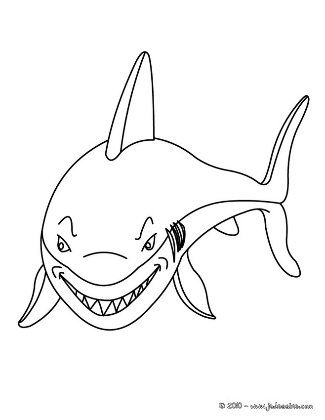 Coloriages coloriage d 39 un requin affam - Dessin d un requin ...