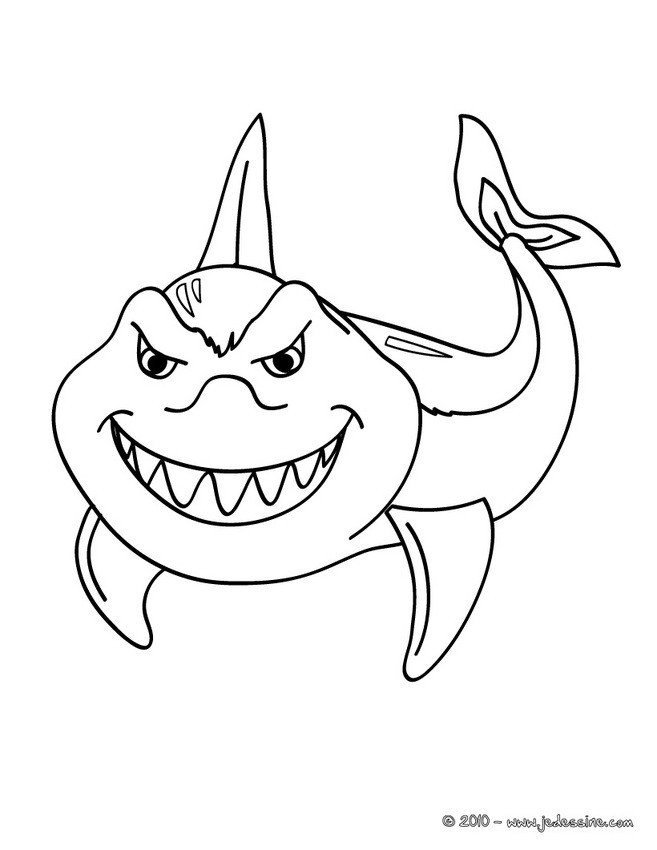 Coloriages coloriage de requin imprimer - Requin en dessin ...