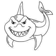 Coloriages requin blanc - Requin rigolo ...
