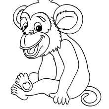Coloriage d'un bébé CHIMPANZE - Coloriage - Coloriage ANIMAUX - Coloriage ANIMAUX DE LA JUNGLE - Coloriage SINGE