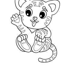 Coloriage d'un bébé TIGRE - Coloriage - Coloriage ANIMAUX - Coloriage ANIMAUX DE LA JUNGLE - Coloriage TIGRE