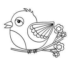 Petit oiseau à colorier - Coloriage - Coloriage ANIMAUX - Coloriage OISEAU - Coloriages OISEAUX