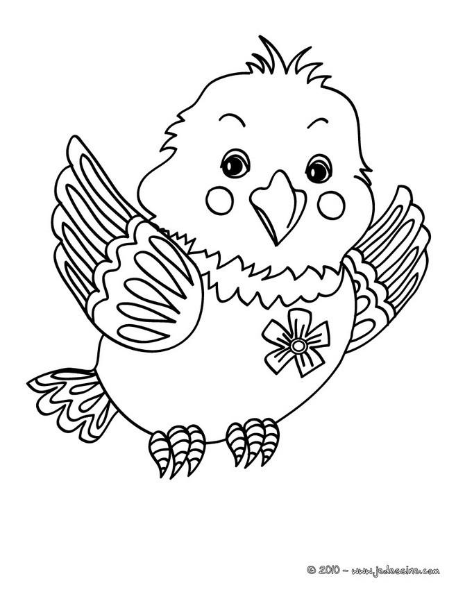 Coloriage D Oiseaux Coloriages Coloriage A Imprimer Gratuit Fr