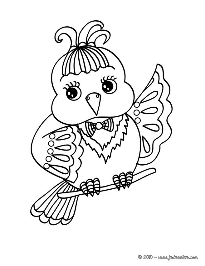 Coloriages coloriage d 39 un oisillon - Oiseau a colorier ...