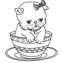 Coloriage : Bébé chat dans une tasse