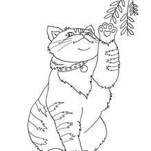 Coloriage : Chat qui joue avec une branche
