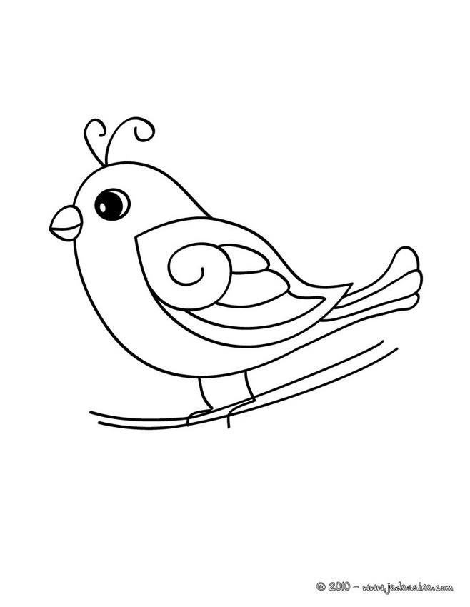 Coloriages b b oiseau - Dessin d oiseau a imprimer ...