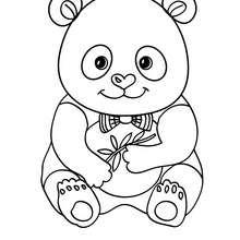Coloriage d'un bébé PANDA - Coloriage - Coloriage ANIMAUX - Coloriage ANIMAUX d'ASIE et OCEANIE - Coloriage PANDA