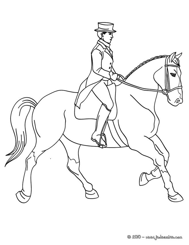 dessin cheval dressage