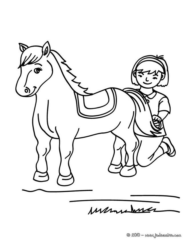 Coloriages coloriage d 39 un cheval bross - Dessin cavaliere ...