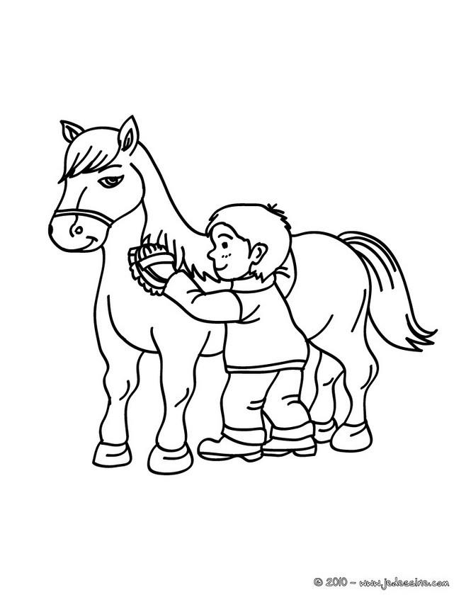 Coloriages brossage d 39 un cheval colorier - Coloriage equitation ...