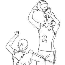 Coloriage VOLLEYBALL en ligne - Coloriage - Coloriage SPORT - Coloriage VOLLEYBALL